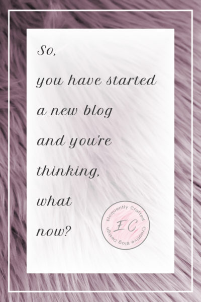 So, you have  started a new blog, and you are thinking, what now?